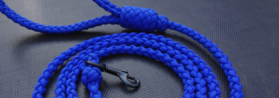 Handmade Leash Paracord