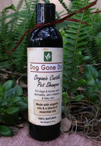 All Natural Handmade Dog Shampoo - Dog Gone Dirt