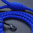 In Gear! Paracord Pet Leashes