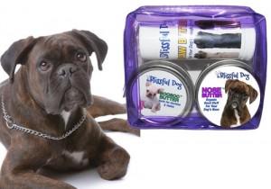 Handmade Dog Balm - The Blissful Dog